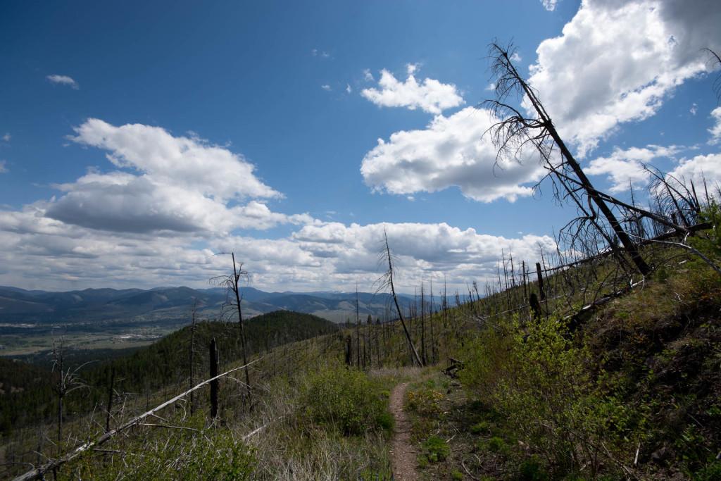Blue Mountain Trail 3.01