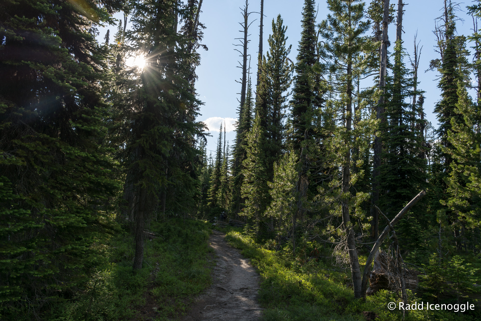 Trail leading to Ch-paa-qn Peak at Mile 0