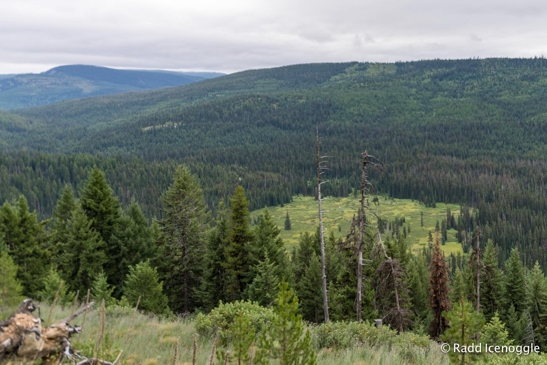 Packer's Meadow from Lee Ridge