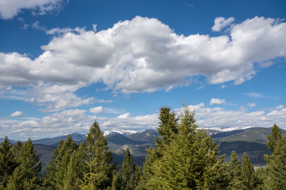 View into the Rattlesnake Wilderness from Mount Jumbo