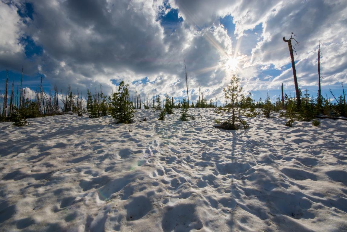 Illuminated snowfield at nearly 8000 feet