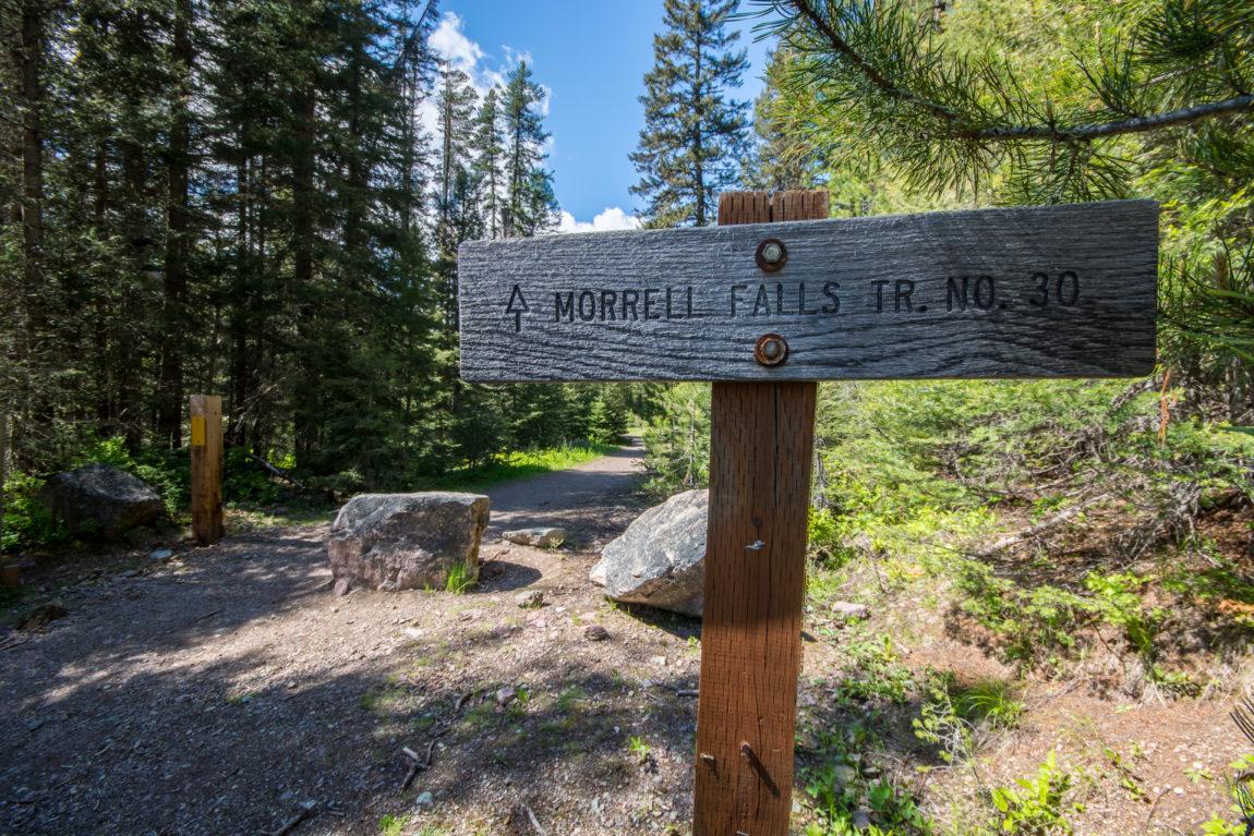 Morrell Falls trailhead - start of the fun