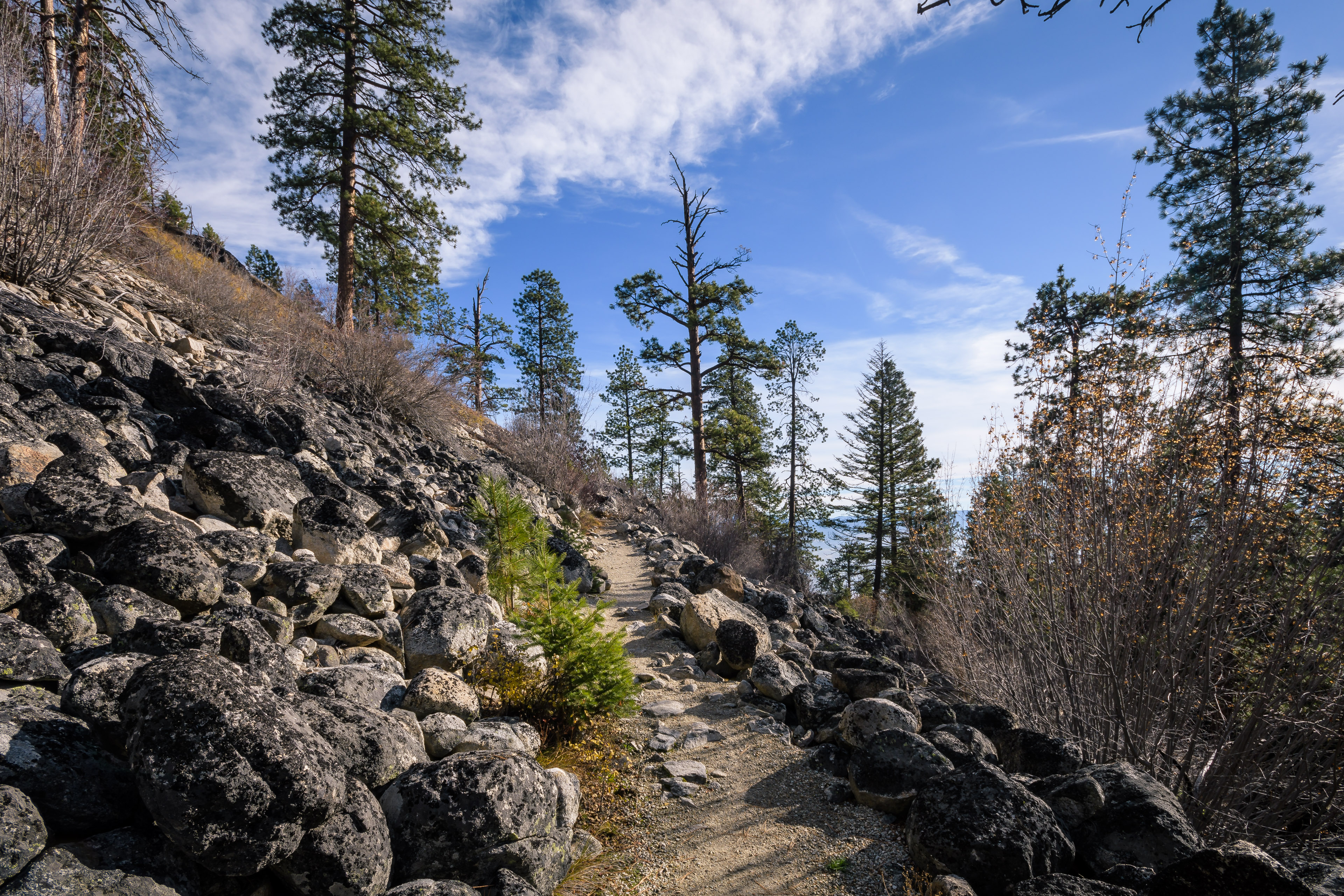 The carved trail to the Blodgett Canyon Overlook