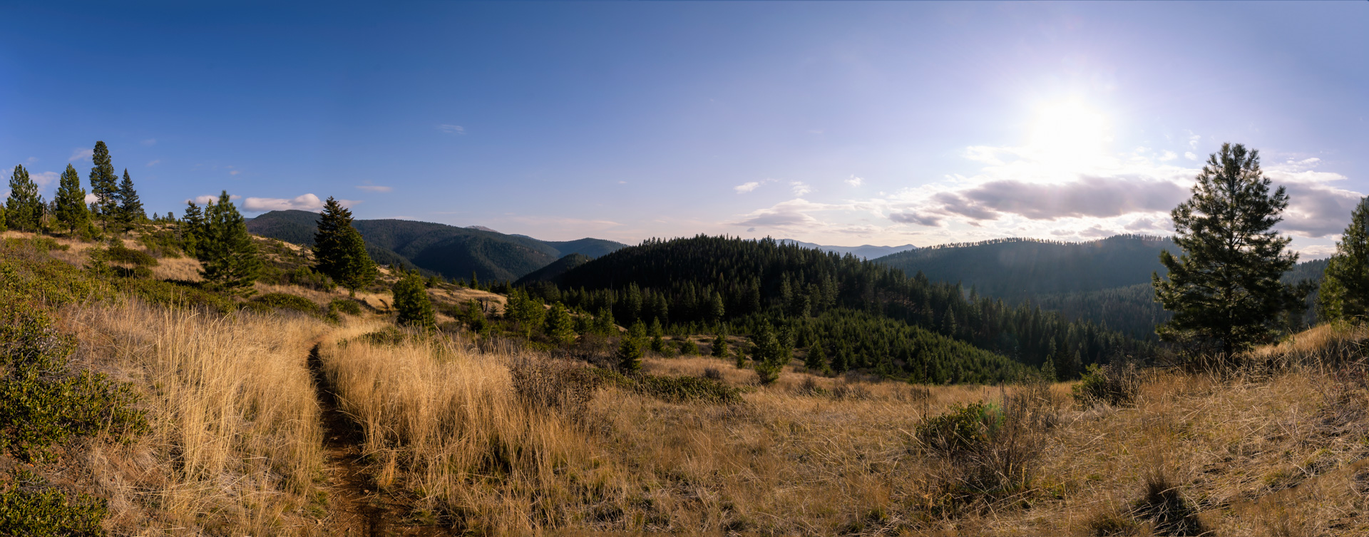 The view from above Sawmill Gulch