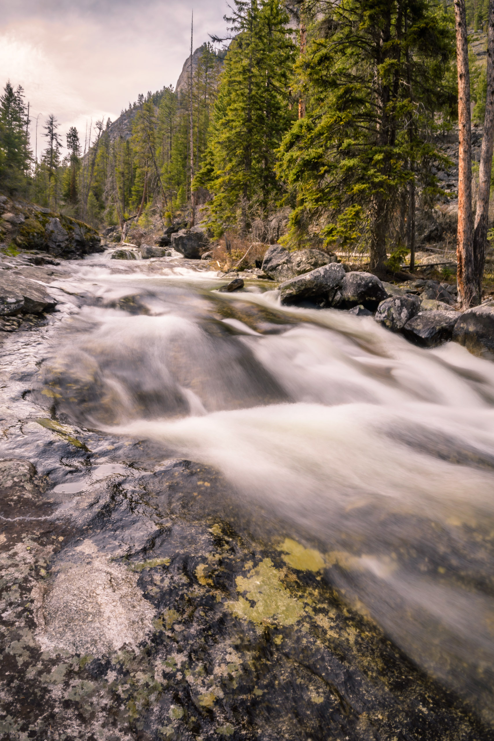 Centuries of running water has smoothed the boulders and cobbles of Bear creek