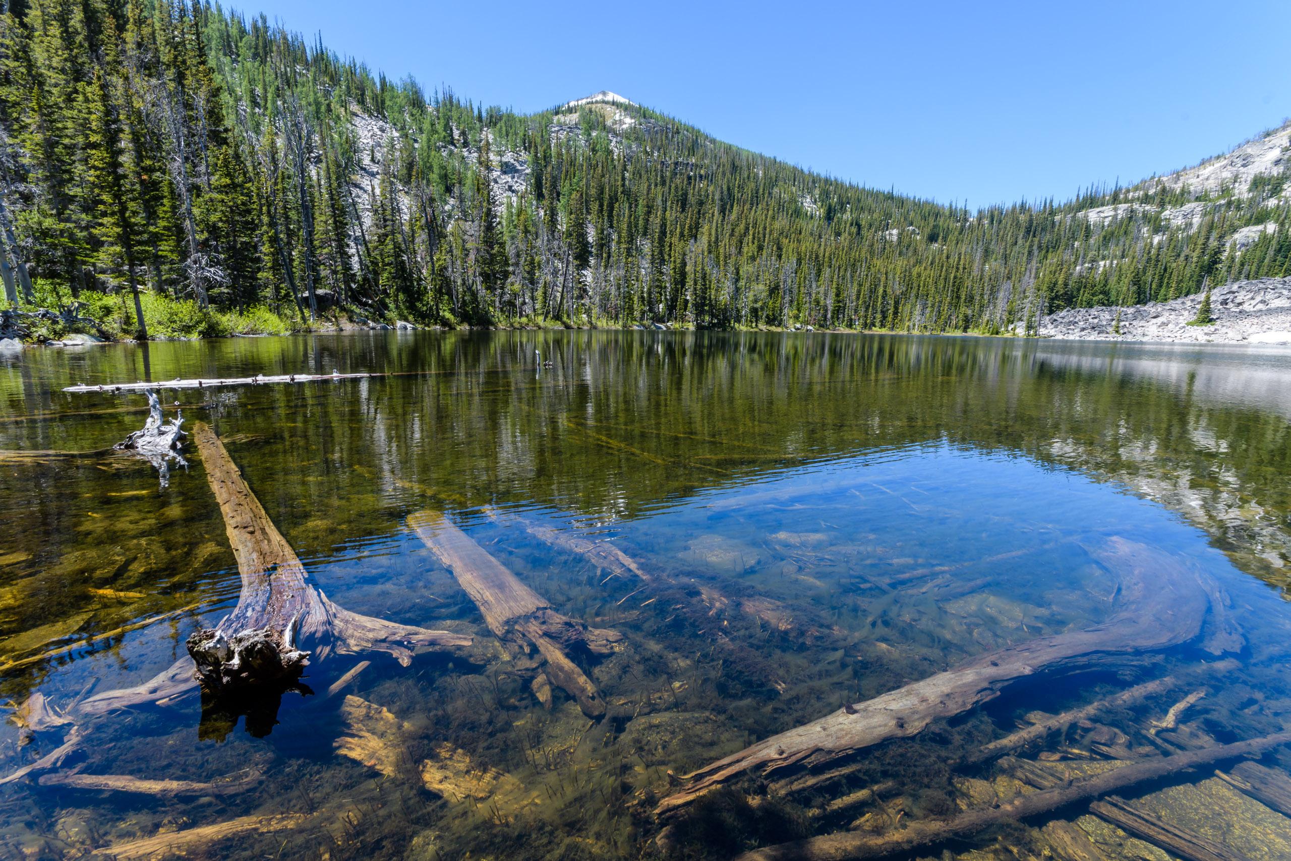 Camas Lake