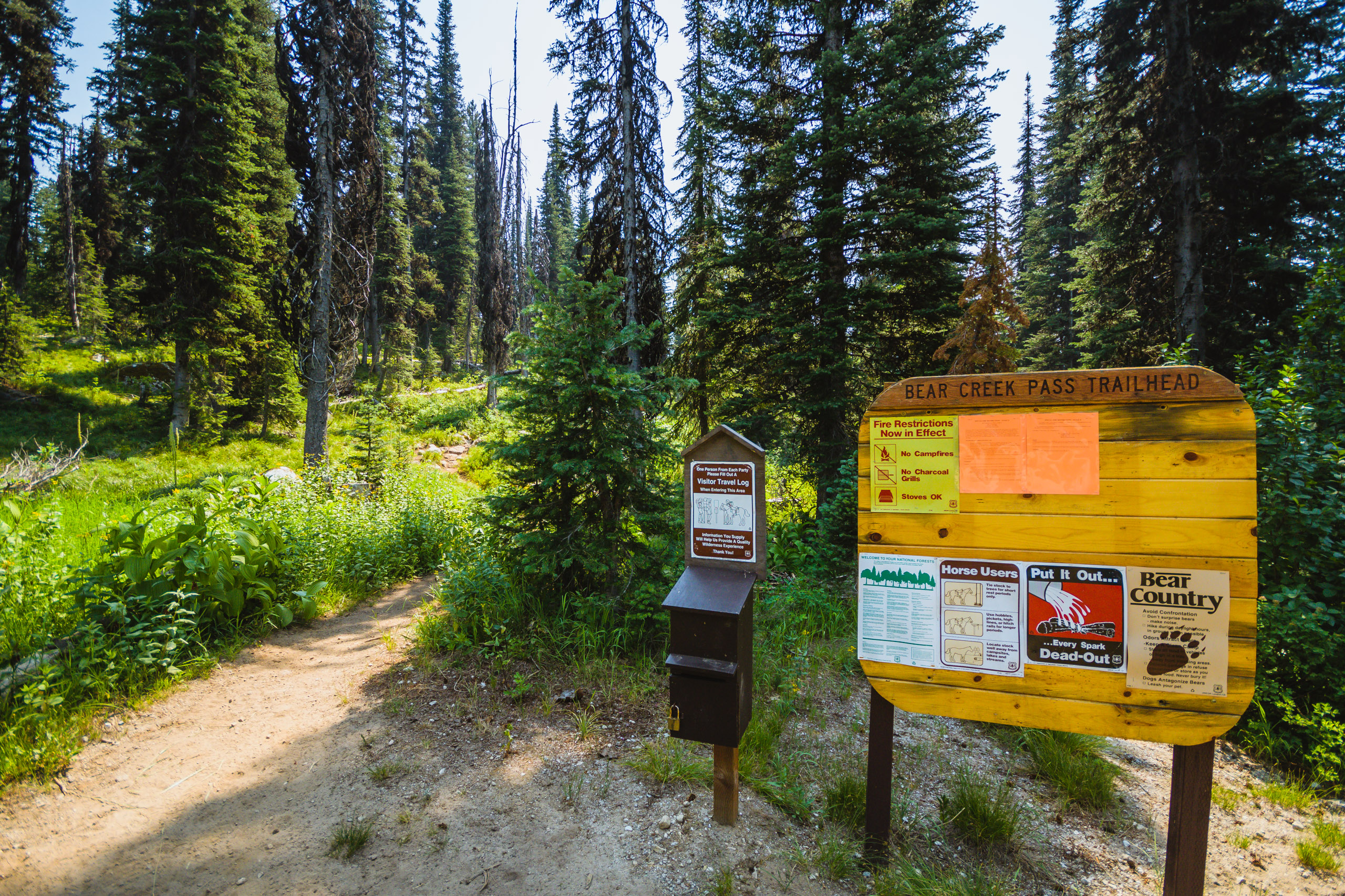 Starting out from the Bear Creek Pass trailhead